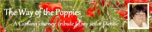 header-poppies.jpg